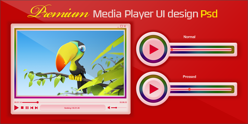 premium media player display