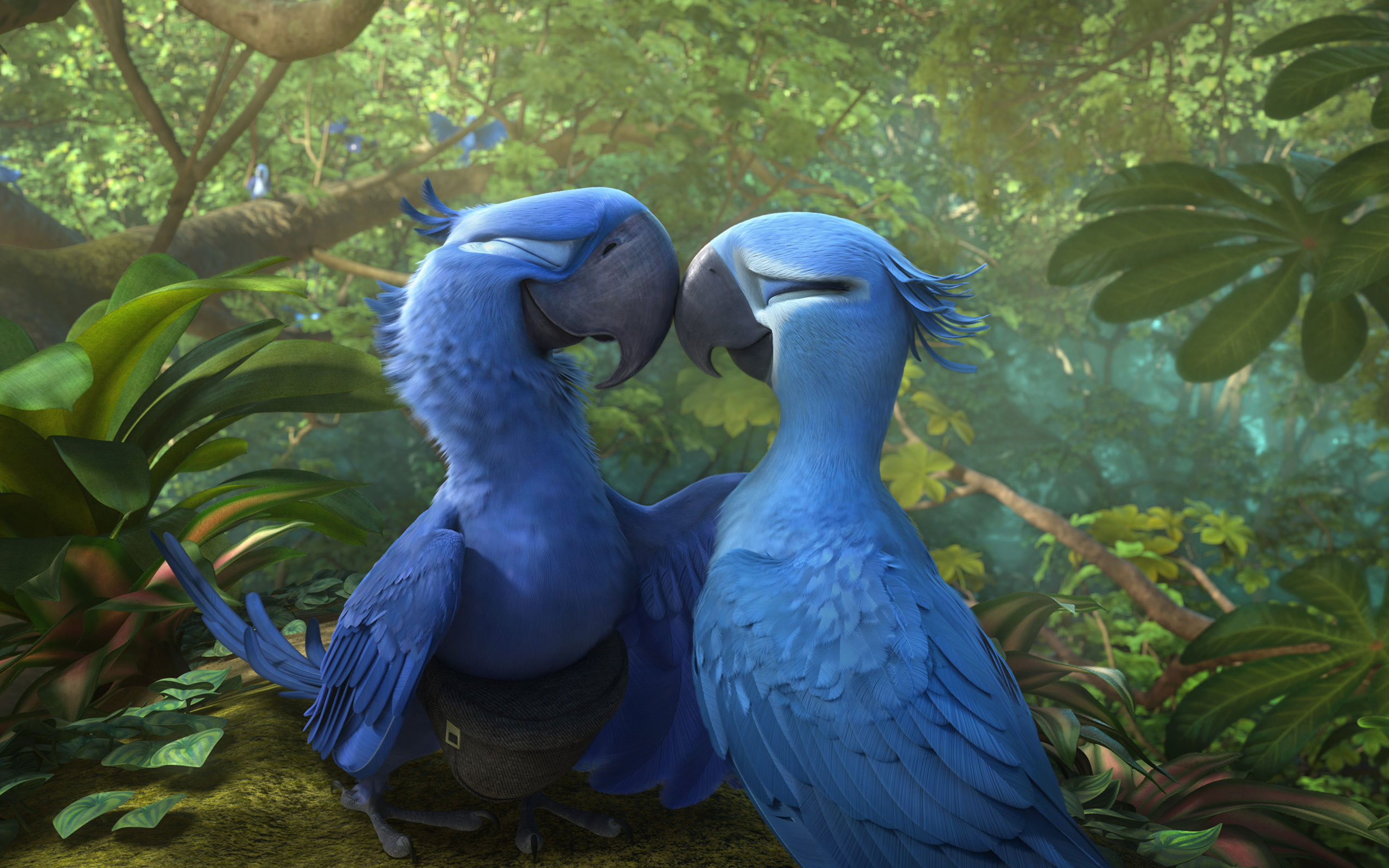 Free HD Rio 2 Movie Wallpapers & Desktop Backgrounds (2014