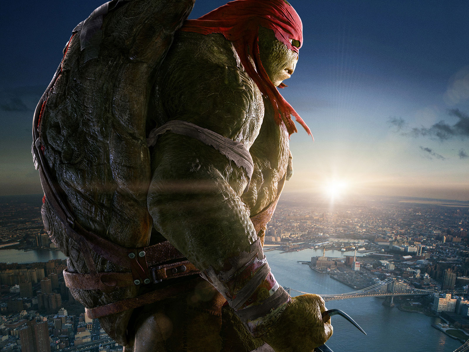teenage mutant ninja turtles  tmnt 2014  hd desktop