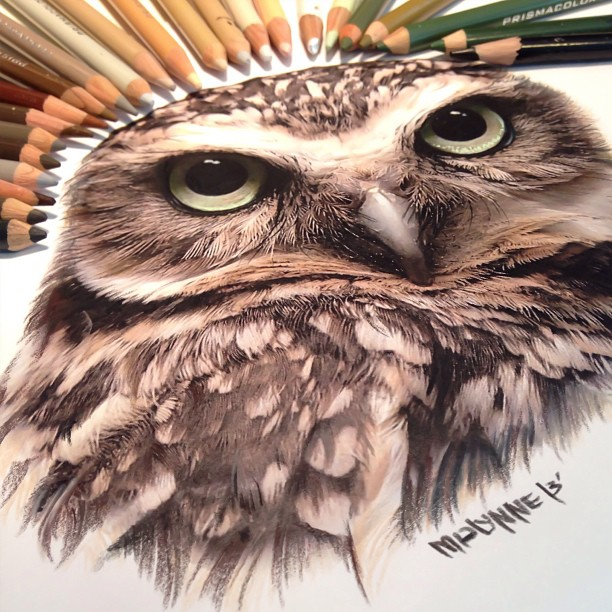drawing-pencil art-ink art-art (3)