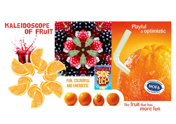 0150 Spacehopper_Fruitascope Moodboard