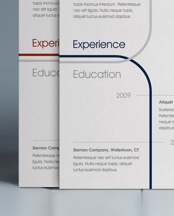 professional resume examples 2014