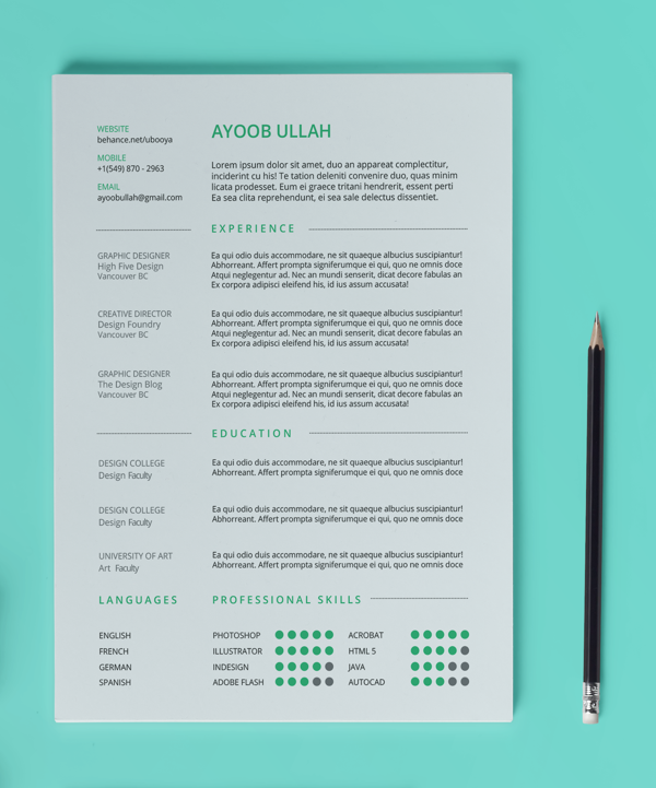 Best Free Professional Cv Resume Template 2014(a)