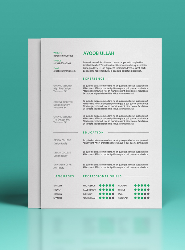 best-free-professional-cv-resume-template-2014(a) (3)