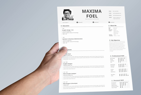 best-free-professional-cv-resume-template-2014(b) (2)