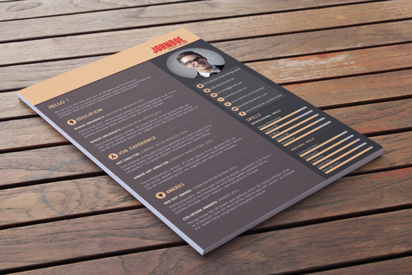 best-free-professional-cv-resume-template-2014(c) (1)
