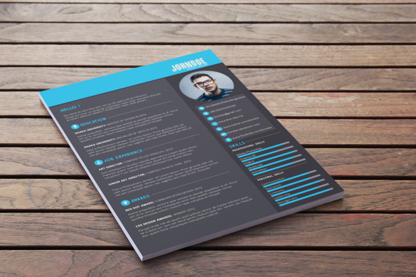 best-free-professional-cv-resume-template-2014(c) (2)