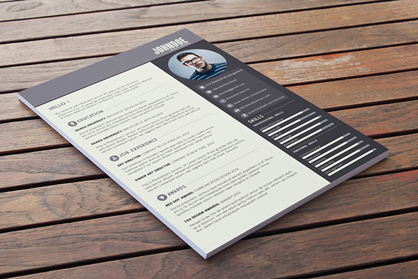 best-free-professional-cv-resume-template-2014(c) (3)