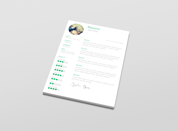 best-free-professional-cv-resume-template-2014(g) (2)