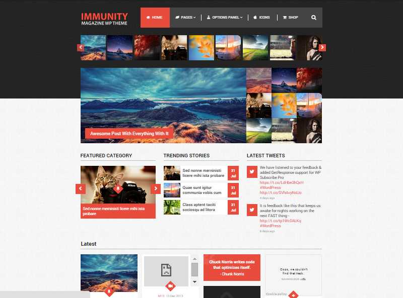 Immunity-Multipurpose-Responsive-WordPress-Theme