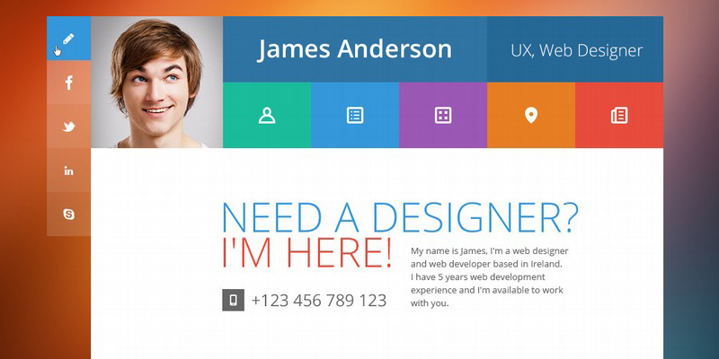 Professional Online Resume  Cv Wordpress Themes   A Graphic