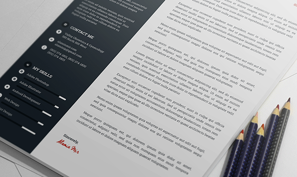 Free Awesome Resume Template 6