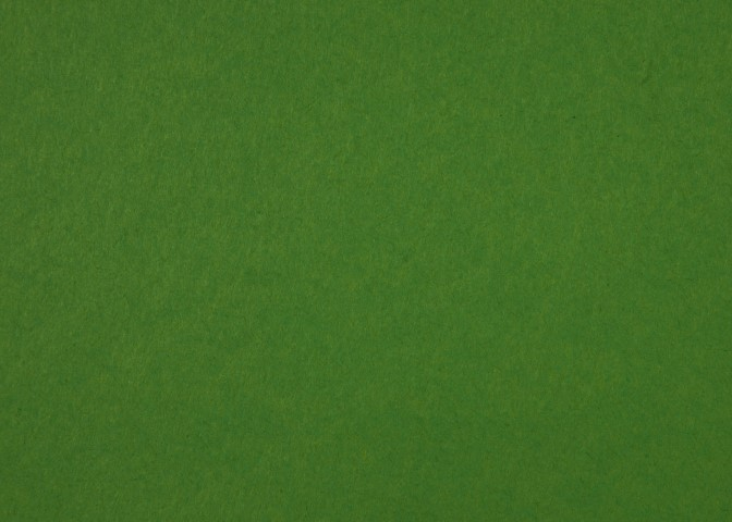 80lb-Vellum-Leaf-Green