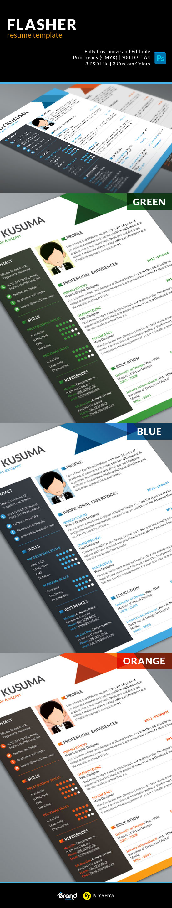 Free Resume-CV Template For Graphic Designers 2015