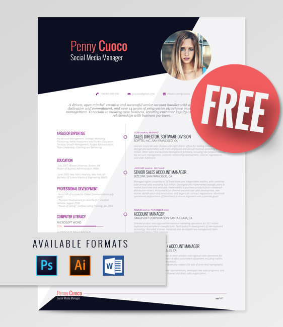 Free Resume Template For Social Media Manager 2015 - 3
