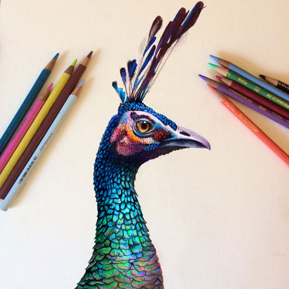 Amazing-Drawings-by-Morgan-Davidson-1 (29)