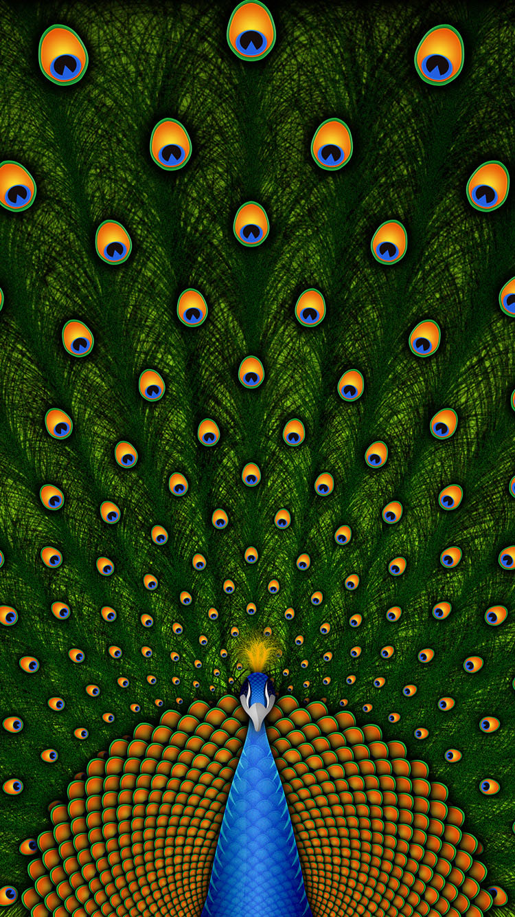 Peacock-iphone-6-wallpaper-Latest-2015