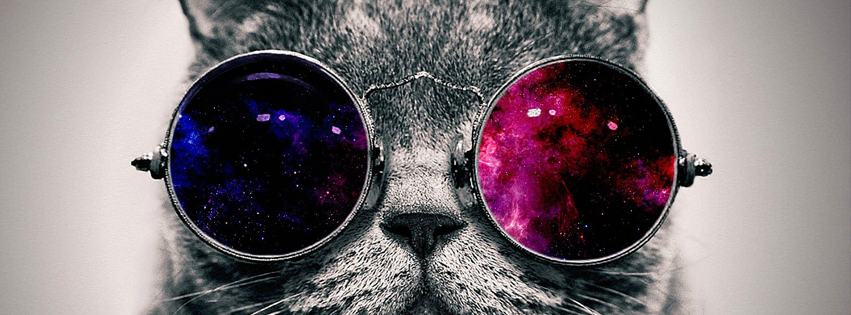 Cat Fashion facebook Cover
