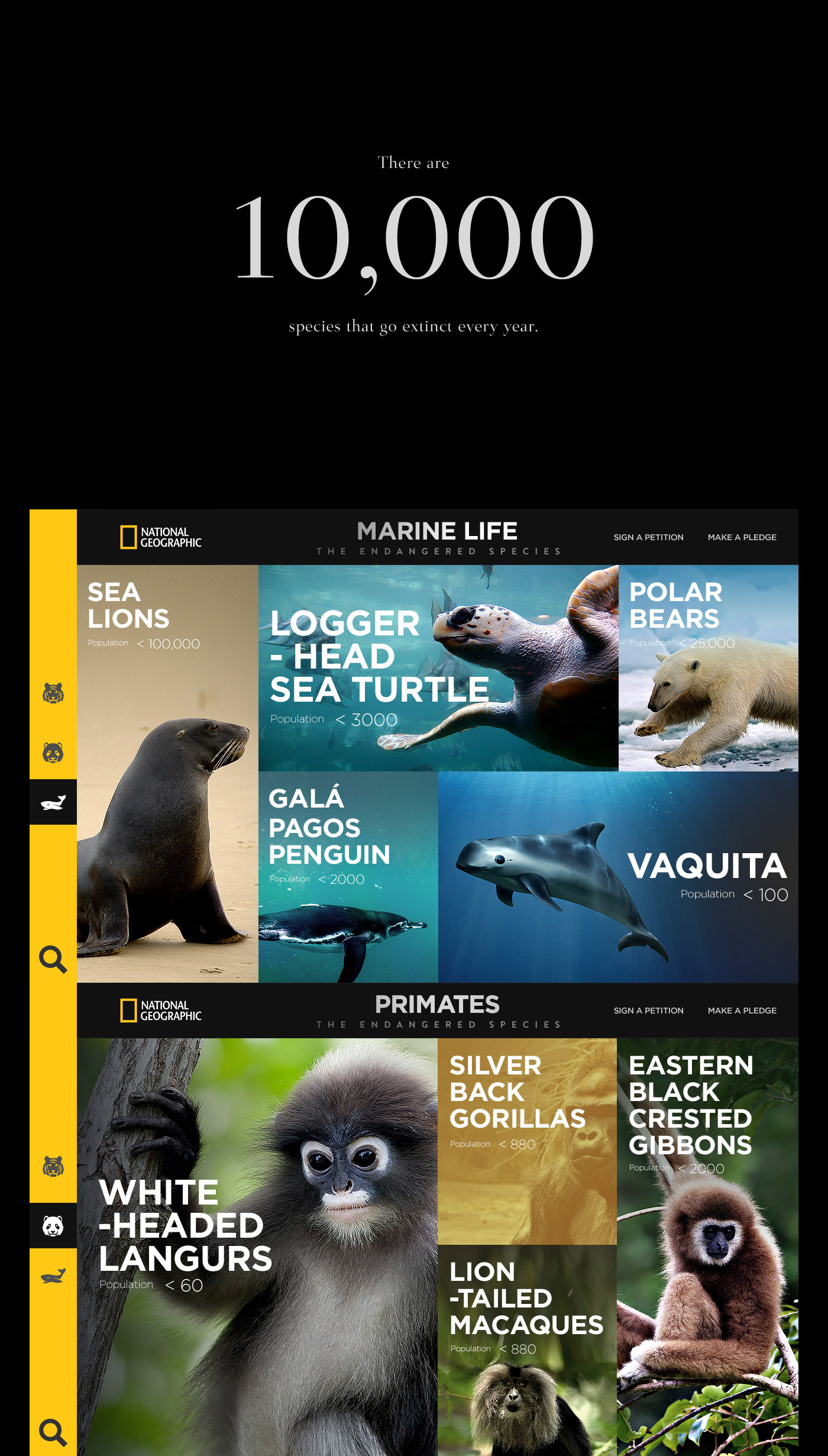 National Geographic  UX Concept-The Endangered Species (2)