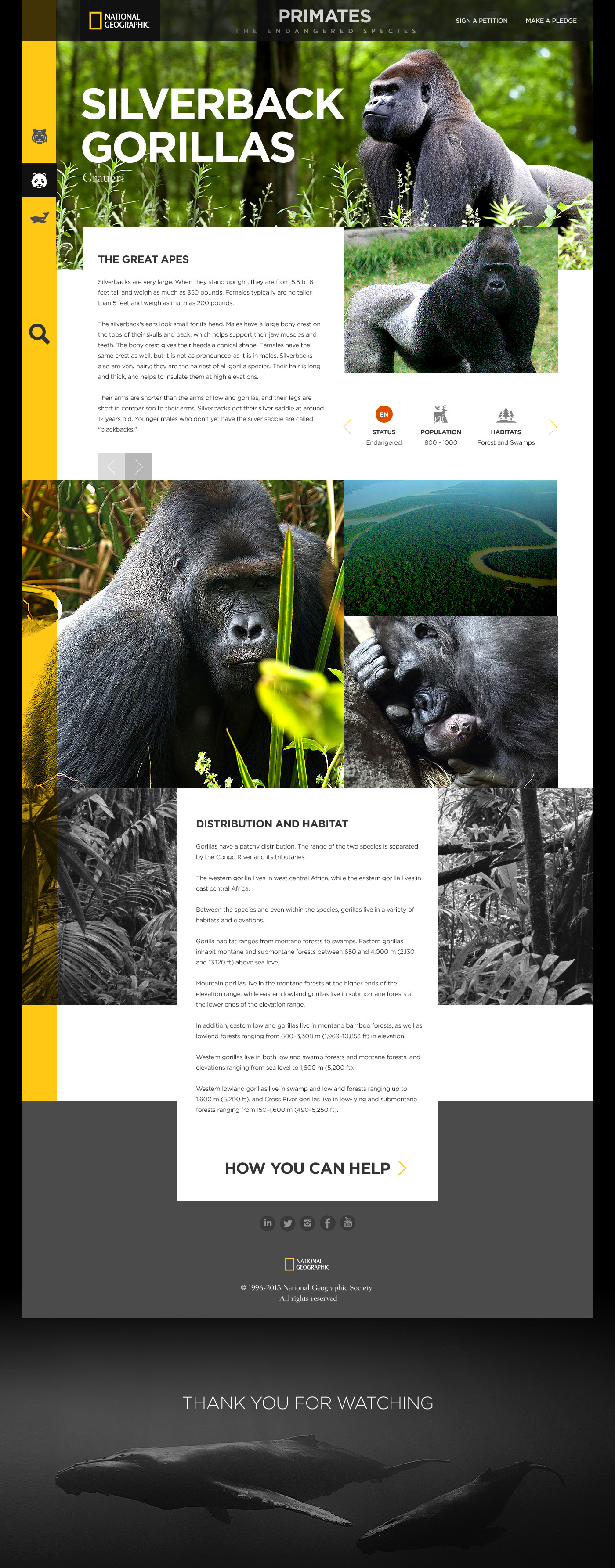 National Geographic  UX Concept-The Endangered Species (3)