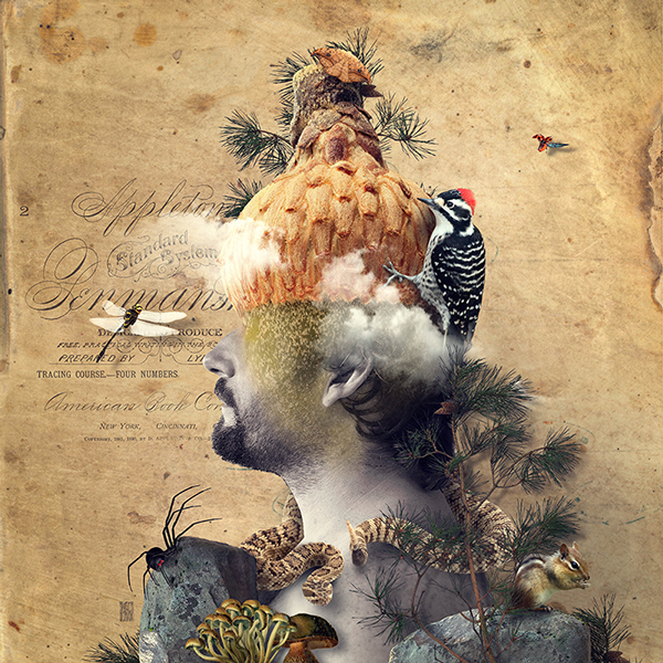 The Nature of Mankind Illustration Photography (1)