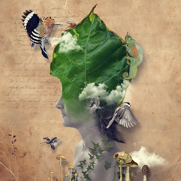 The Nature of Mankind Illustration Photography (5)