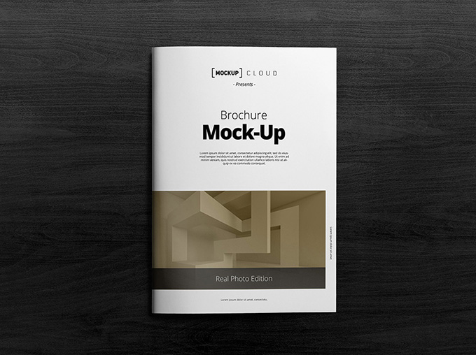 Free A4 Brochure Title and Inside Mockup (1)