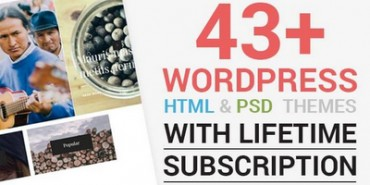 43+ Premium WordPress Themes With Lifetime Subscription