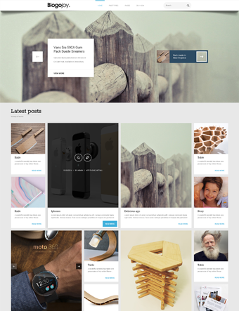 Blogojoy-wp-theme wordpress