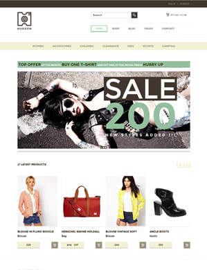Hudson-theme wordpress
