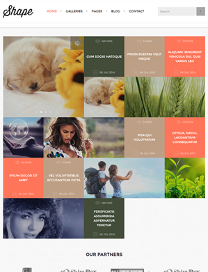 Shape-theme wordpress