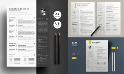 10-Famous-Clean-Resume-Templates-For-Professionals