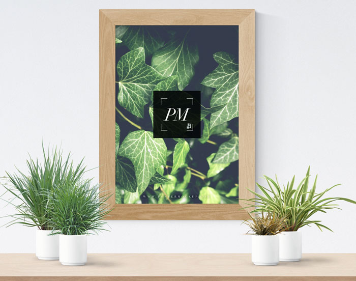 Plant-Vases-With-Wooden-Frame-Poster-Mockup-PSD