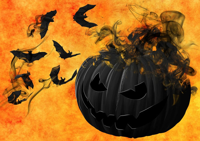 Halloween-Pumpkin-Bats-Night-Creepy-Darkness