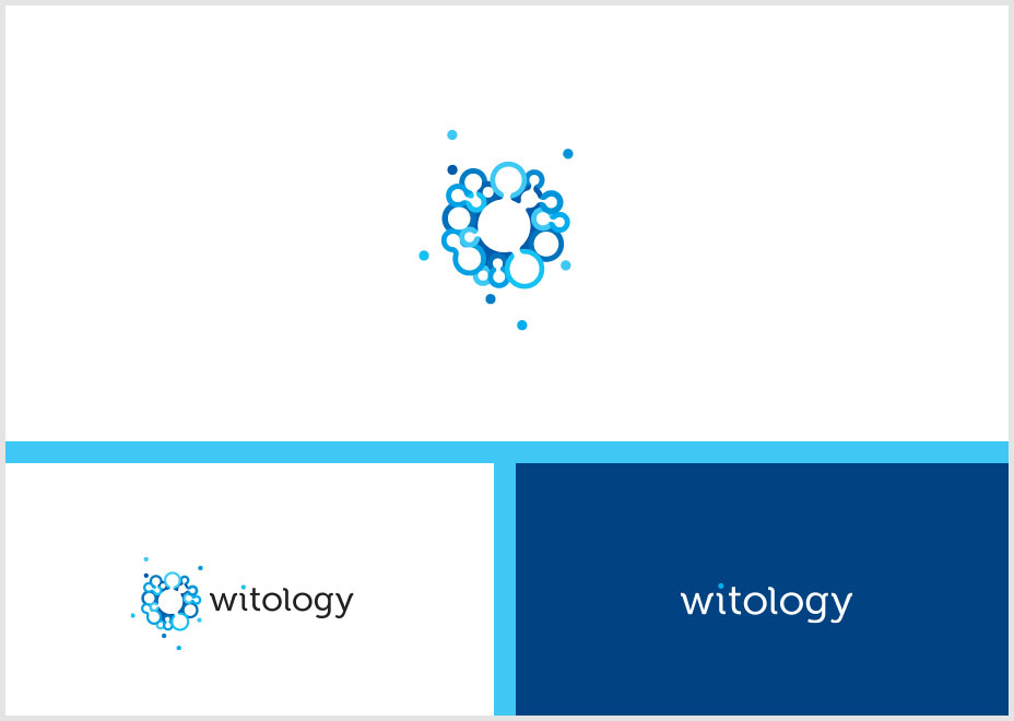 Witology-Crowd-Sourcing