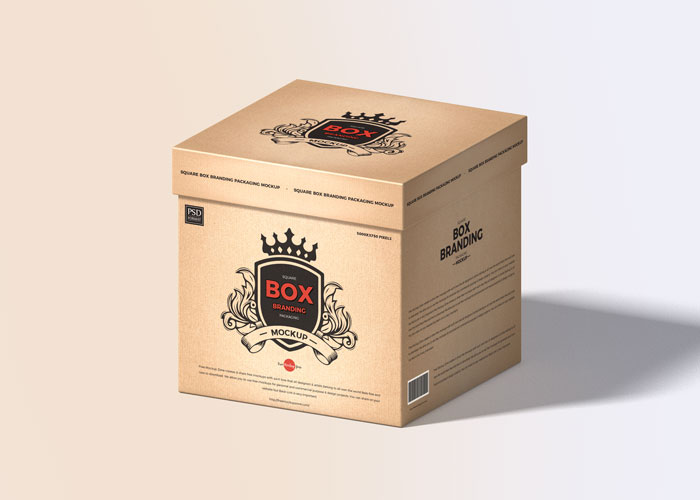 Free-PSD-Box-Packaging-Mockup