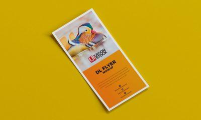 Free-PSD-Dl-Flyer-Mockup-1