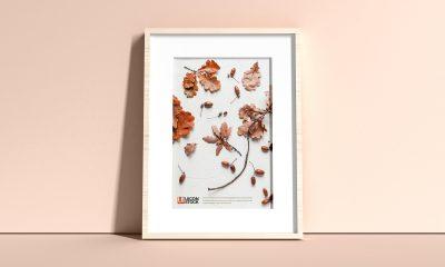 Free-Elegant-Frame-Mockup-PSD